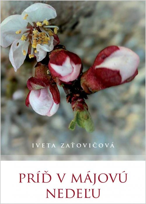 kniha Príď v májovú nedeľu